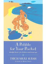 Pebble For Your Pocket, A