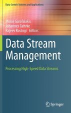 Data Stream Management