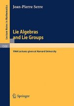 Lie Algebras and Lie Groups