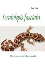 Teratolepis fasciata