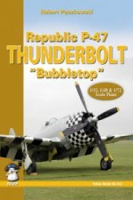 Republic P-47 Thunderbolt Bubbletop