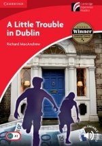 Little Trouble in Dublin Level 1 Beginner/Elementary