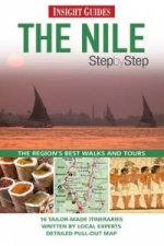 Nile Insight Step by Step Guide