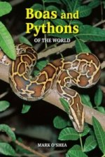 Boas & Pythons of the World