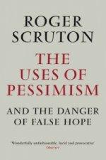 Uses of Pessimism