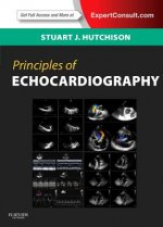 Principles of Echocardiography