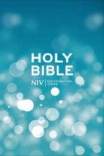 NIV Popular Hardback Bible