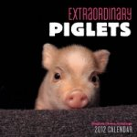 Extraordinary Piglets 2012 Mini Wall Calendar