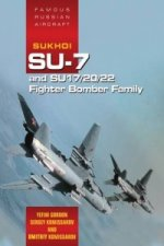 Famous Russian Aircraft: Sukhoi Su-7 and Su - 17/20/22 Fight