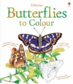Butterflies Colouring Book