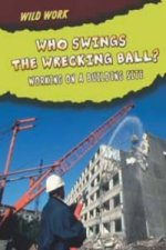Who Swings The Wrecking Ball