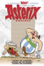 Asterix: Omnibus 2
