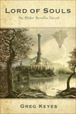 Elder Scrolls Novel