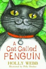 Cat called Penguin