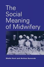 Social Meaning of Midwifery
