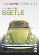 Essential Buyers Guide Volkswagon Beetle