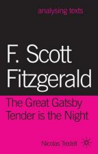 F. Scott Fitzgerald: The Great Gatsby/Tender is the Night