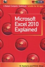 Microsoft Excel 2010 Explained