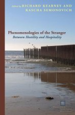 Phenomenologies of the Stranger