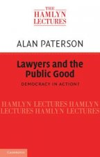 Lawyers and the Public Good