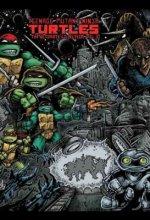 Teenage Mutant Ninja Turtles The Ultimate Collection Volume 2