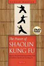 Power of Southern Shaolin Kung Fu