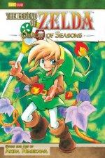 Legend of Zelda, Vol. 4