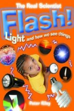 Flash! Light and How We See Things