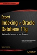 Expert Indexing in Oracle Database 11g: Maximum Performance