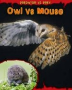 Owl Vs Mouse
