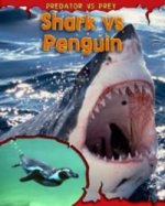 Shark Vs Penguin