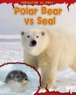 Polar Bear Vs Seal