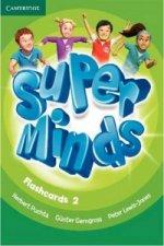 Super Minds Level 2 Flashcards (Pack of 103)