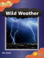 Oxford Reading Tree: Stage 6: Wild Weather
