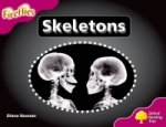 Oxford Reading Tree: Stage 10: Fireflies: Skeletons