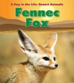 Day in the Life: Desert Animals: Fennec Fox