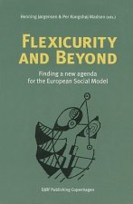 Flexicurity and Beyond