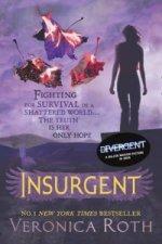 Insurgent 2.