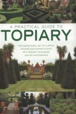Practical Guide to Topiary