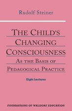 Child's Changing Consciousness
