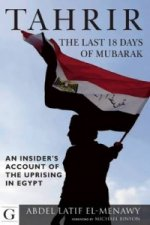 Tahrir: The Last 18 Days of Mubarak
