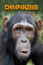 Living in the Wild: Primates: Chimpanzees