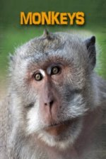 Living in the Wild: Primates: Monkeys