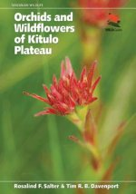 Orchids and Wildflowers of the Kitulo Plateau
