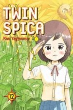 Twin Spica: Volume Twelve