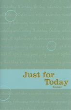Not for Today: Daily Meditations for Recovering Addicts