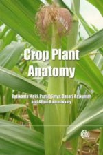 Crop Plant Anatomy