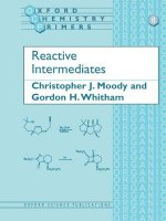 Reactive Intermediates