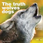 Truth About Wolves and Dogs