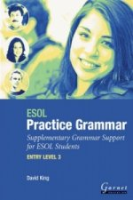 ESOL Practice Grammar - Entry Level 3 - Supplimentary Grammer Support for ESOL Students